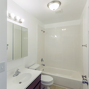 Bathroom finishes in new home construction