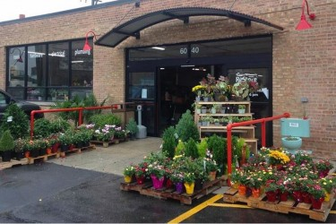 The entrance to ReStore Chicago, flanked with spring plants for sale, at Peterson and Pulaski in Chicago