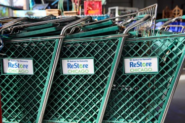ReStore shopping carts in a line